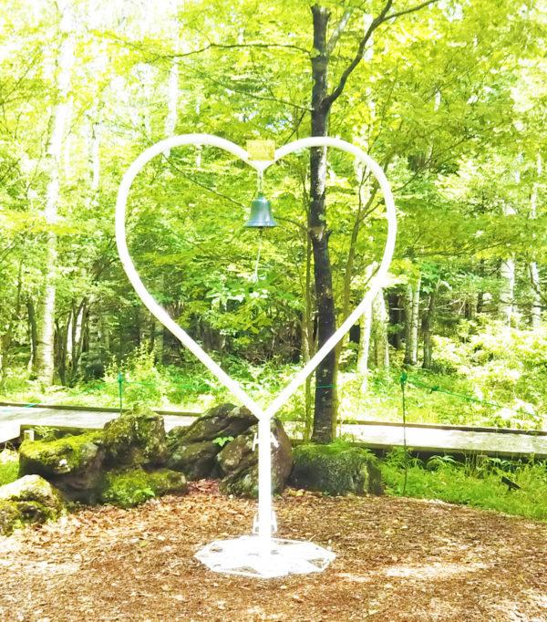 美しい白樺の園でリフレッシュ!
